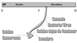 pH-Scale-cancer